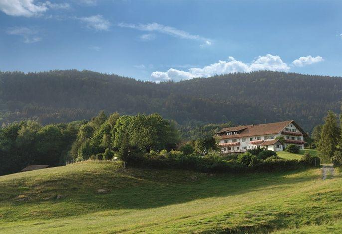 Bild vom Wild-Berghof Buchet in Bernried