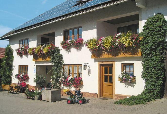 Wohnhaus mit 2 Ferienwohnungen