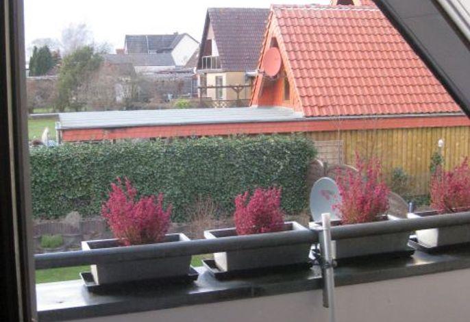 Blick vom Balkon über die Dächer