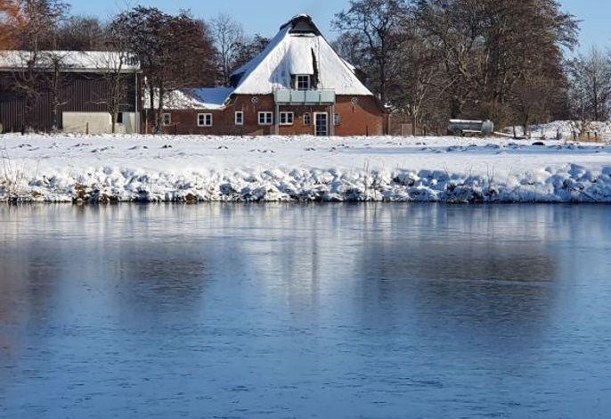 Halbmond im Winter
