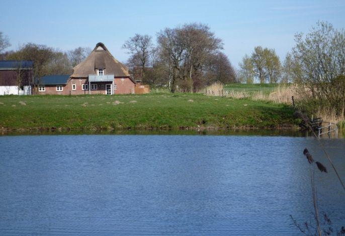 Seeseite