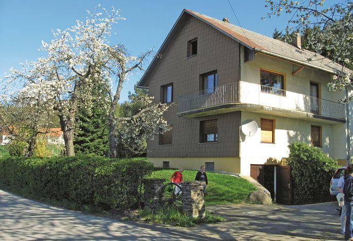 Kirschblüte in Thann