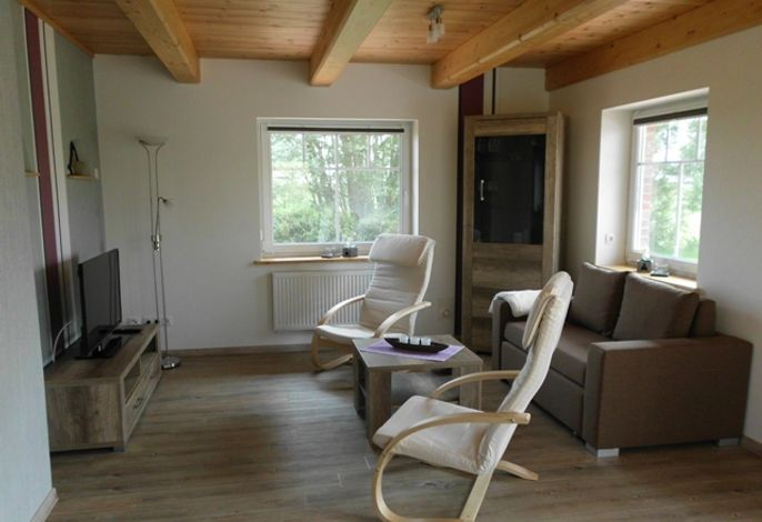 Ferienhaus Olga (Oldenswort) - 40252 - Hansen