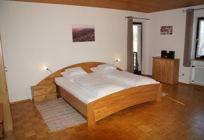 Wohn-/Schlafzimmer1