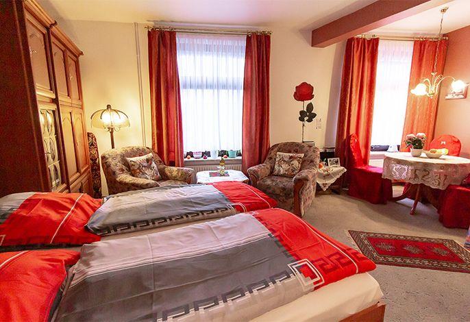Wohn-, Schlaf- und offene Küchenzeile (hier mit heruntergeklapptem Doppelbett)
