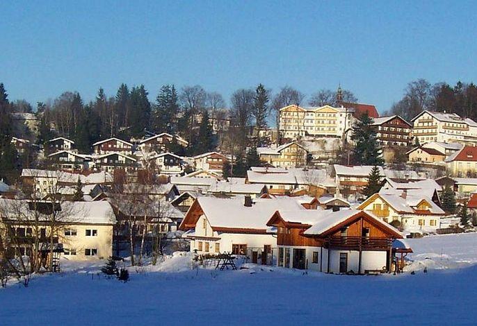 Dorfansicht (Winter)