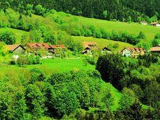 Gasthof Buglhof Sankt Englmar