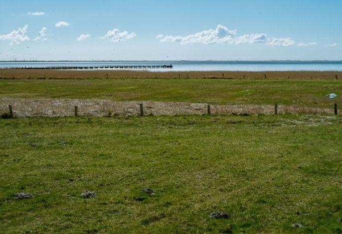 Ferienwohnung im Strandhaus - Urlaub mit Nordseeblick
