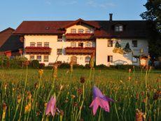 Bauernhof Bauer Zwiesel