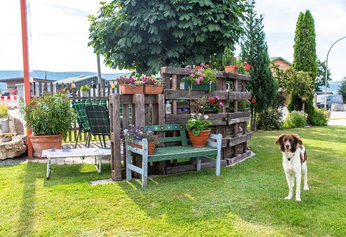 Sitzplatz im Garten.JPG