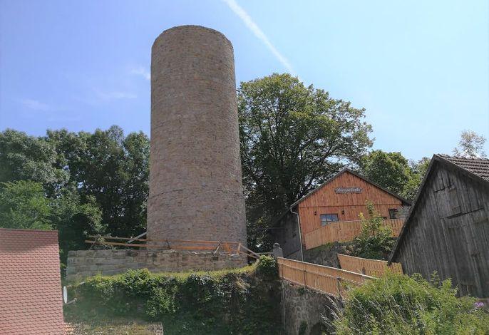 Historische Burganlage Thanstein