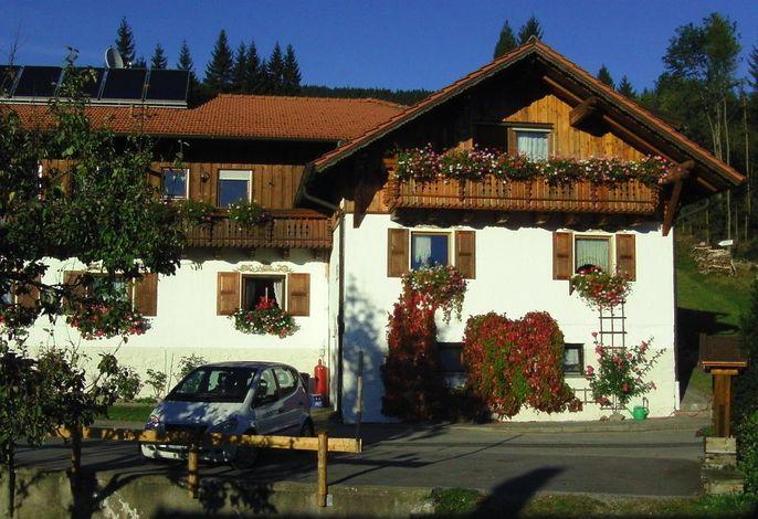 Herbst Haus Waldes..