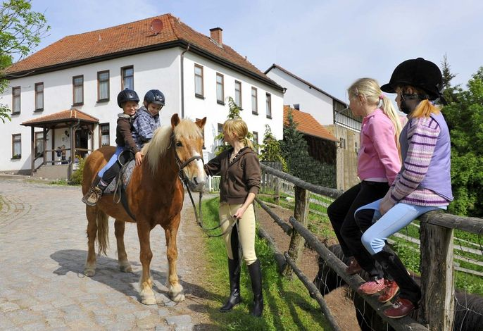 Reiturlaub auf dem Gefildehof Eisenach