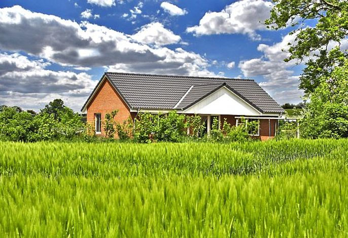 Blick auf Ferienhaus Schwalbennest inmmitten von Feldern auf Hof Scharrerie