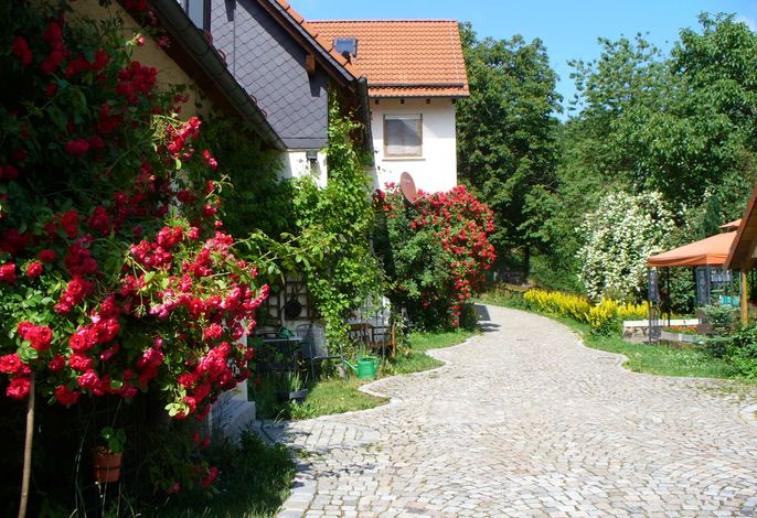 Schlossberghof Blütenpracht