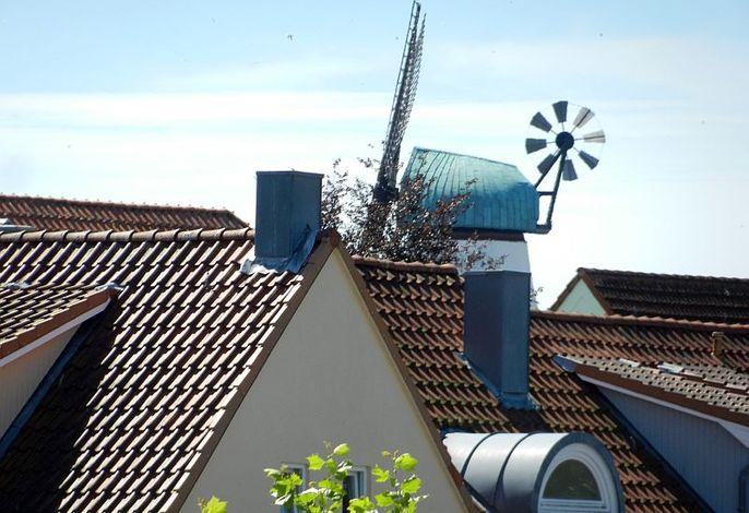 Blick vom Fernsehzimmer auf die Mühle Amanda