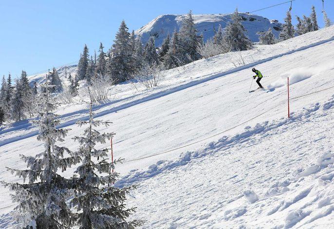 Arber Skigebiet