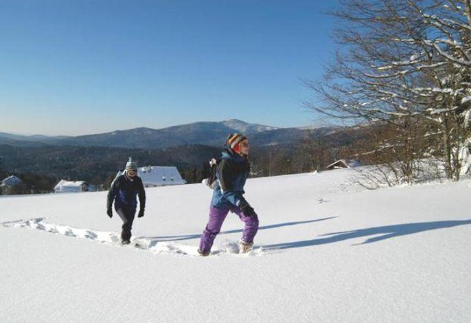 Waldhäuser im Winter