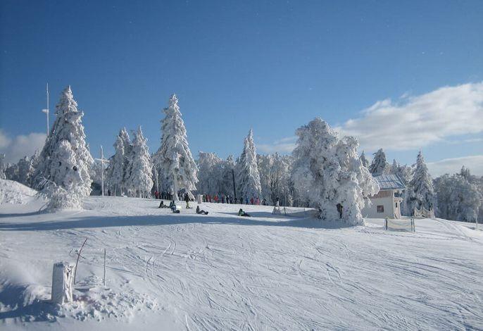 Almberg im Winter