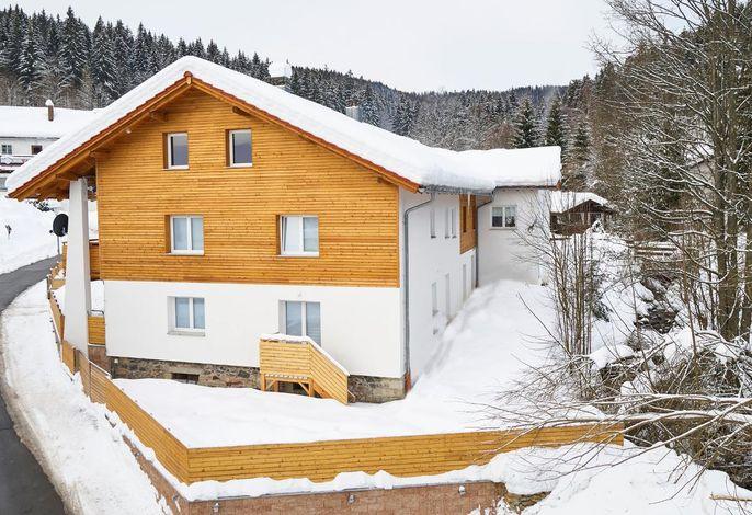 Arber Lofts Winter