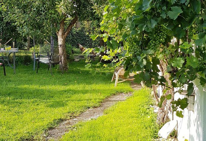 Kleines Häuschen im Grünen