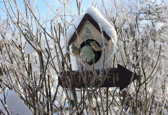 Winter Fetznhof Willkommen