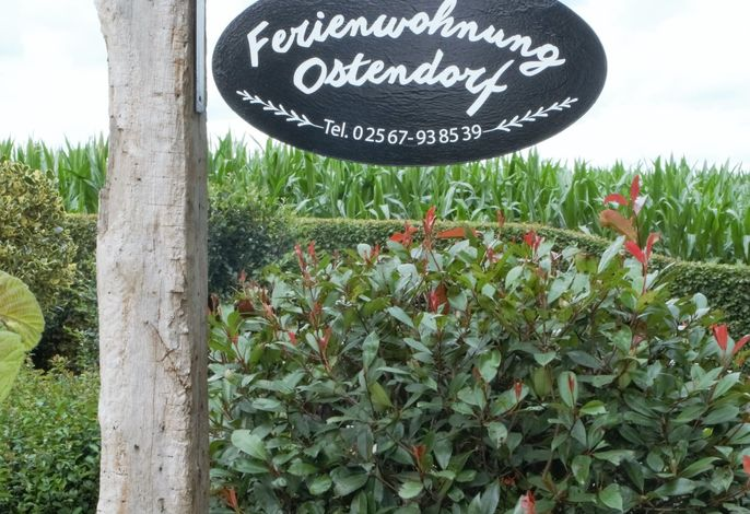 Ferienwohnung Ostendorf