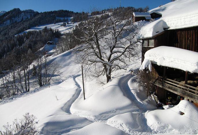 Stirnimann-Gemsch Winterweg Hof