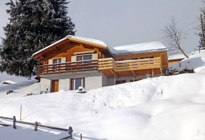 Larix Aussenansicht im Winter