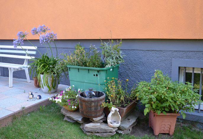 kleine Kräuterecke im Garten