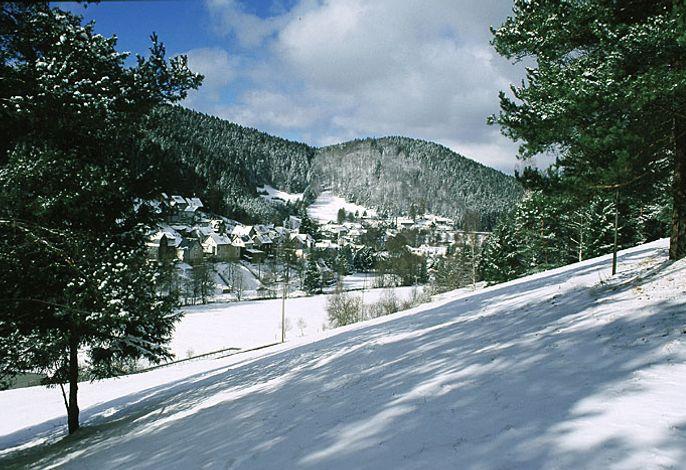 Blick auf  Lichte/OT.Geiersthal im Winter