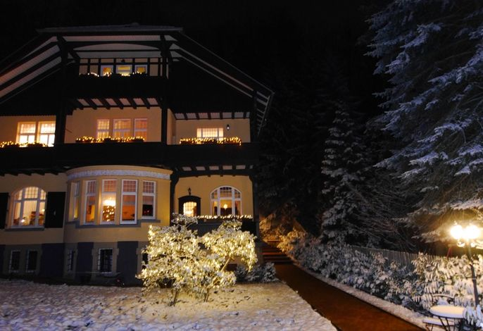 Winter - Villa Liliengrund