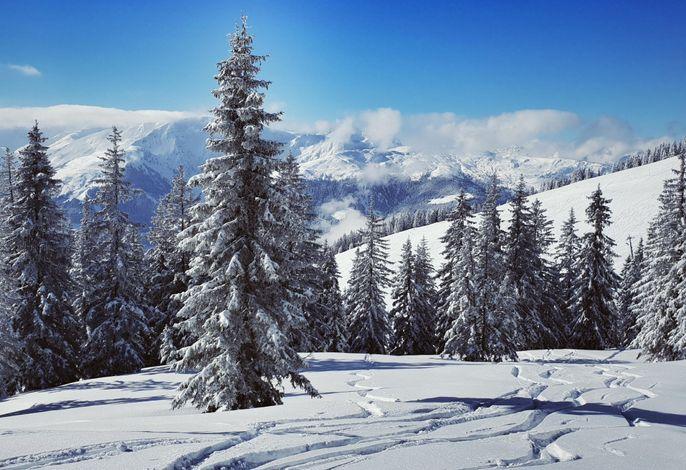 In der Region [Winter] (>5 km)