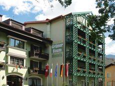 Biohaus Grüner Baum