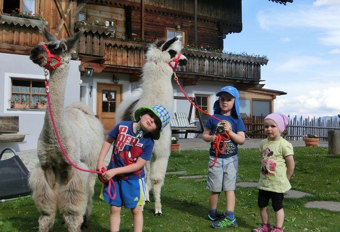 Glinzhof Chalet Nature Resort