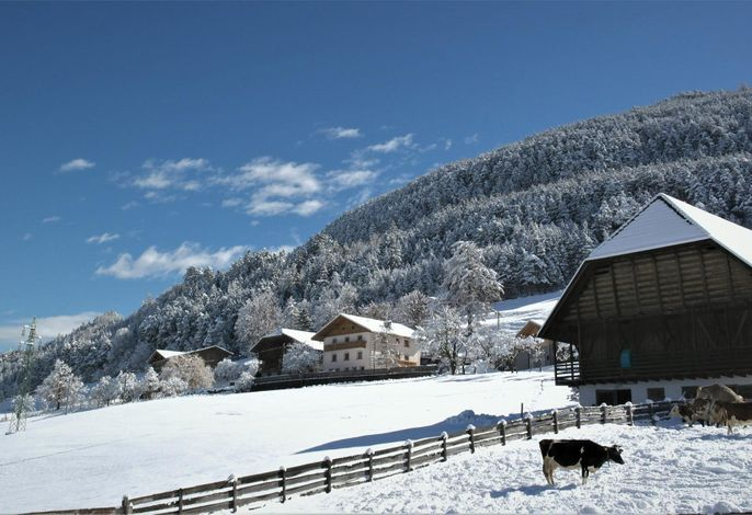 Obermalid im Winter