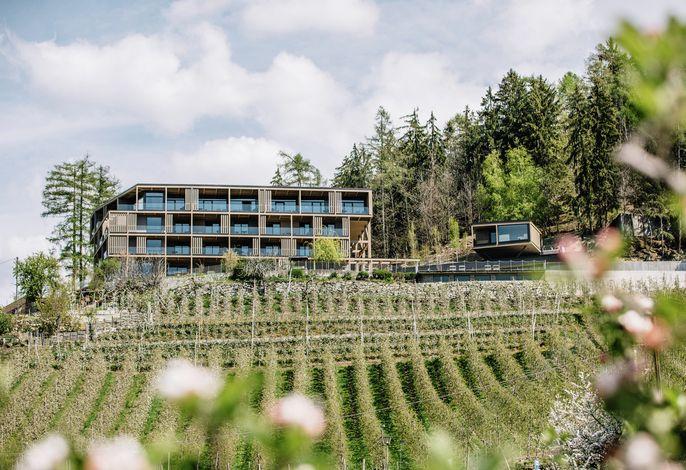 Panoramic Suites Winzerhöhe