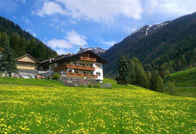 Alpegger Sommer