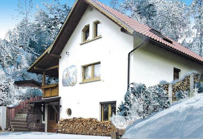 Ferienhaus Dolmarblick, Steinbach-Hallenberg