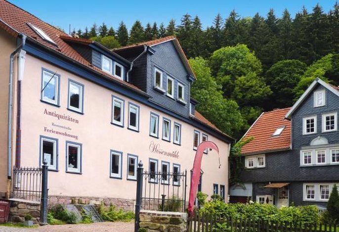 Ferienwohnung, Friedrichroda