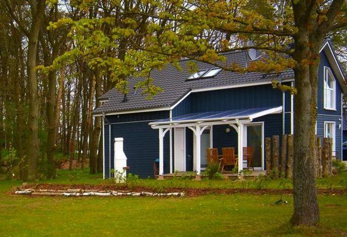 Ferienhaus am Dümmer See, Dümmer