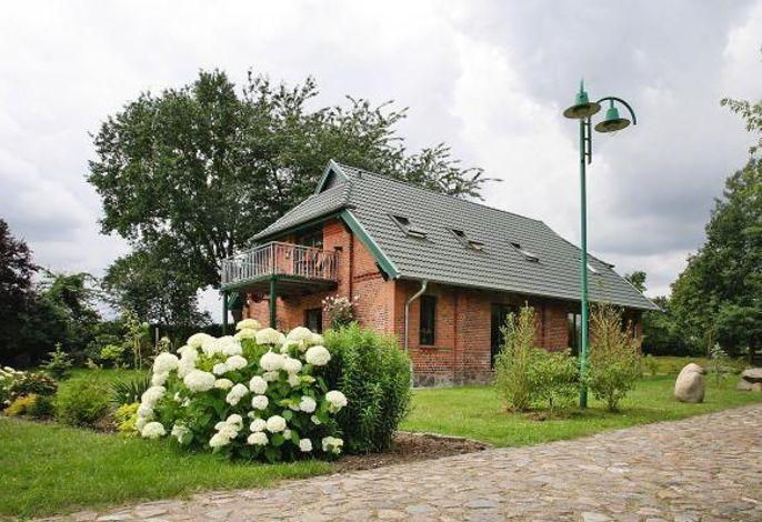 Ferienhaus Seeadler am Dümmer See, Dümmer