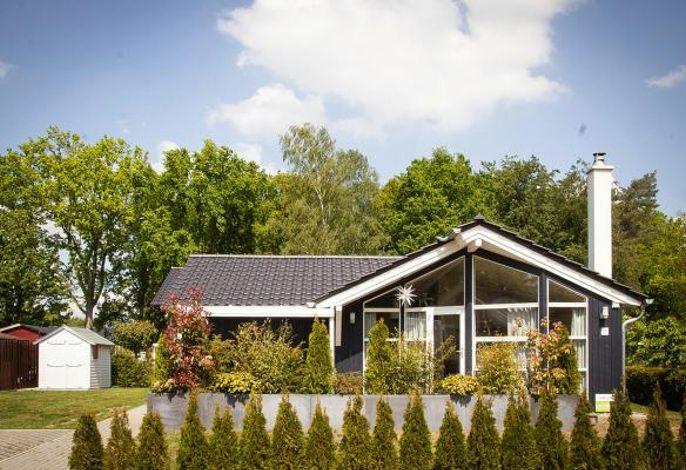 Ferienhaus Seebrise am Dümmer See, Dümmer