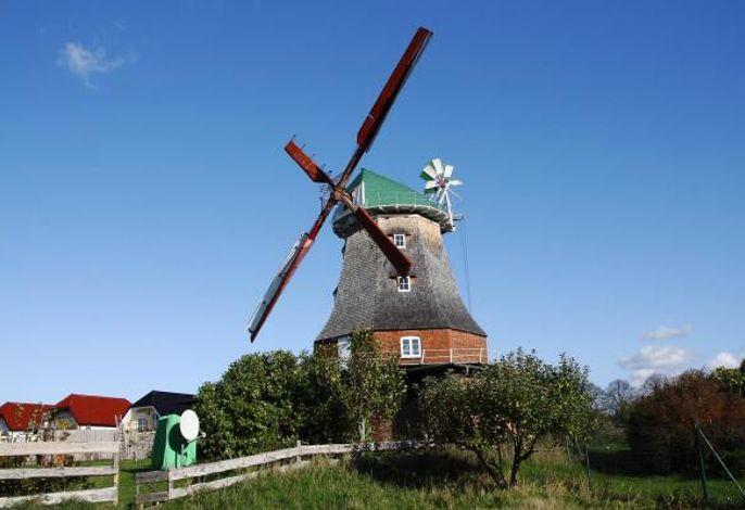 Mühle, Neubukow