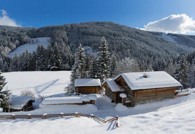 Chalet Steinbock, St. Martin am Tennengebirge