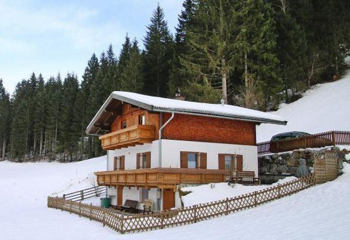 Ferienhaus Kleinwiesen, Wald im Pinzgau