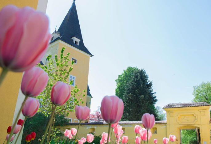 Schloss Muehldorf