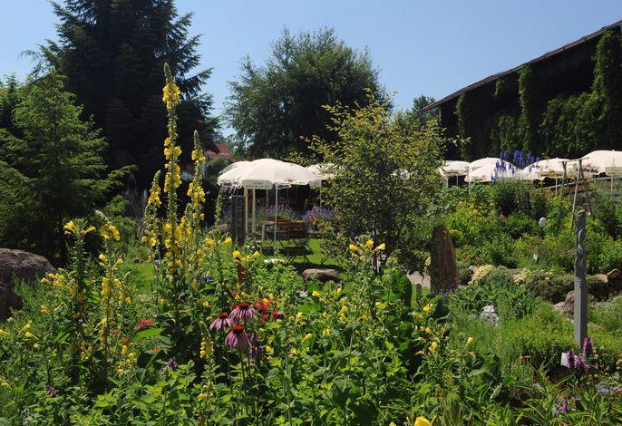Landgasthof Rössle Beim Kräuterwirt