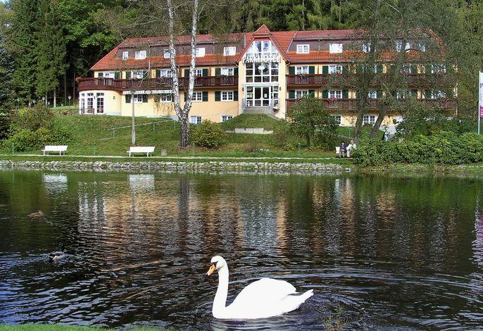 Parkhotel Bad Brambach