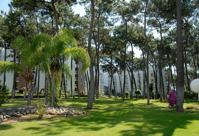 Roc Marbella Park